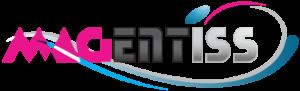 magentiss.fr logo